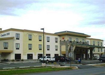 1959 E 3rd Street, USA-17701 Williamsport, Hotel Comfort Inn Williamsport**
