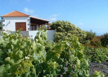 Wohnung Fuencaliente de la Palma, Llanos Negros, Casa Las Viñas