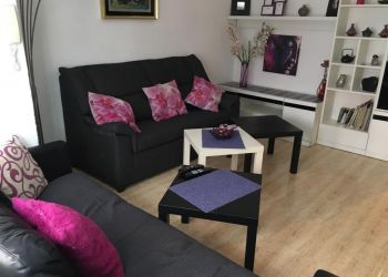 Studio apartment Alicante, Calle Pintor Velázquez, : : I have a room