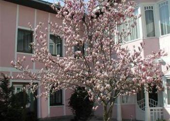 Weilburgstrasse 19, 2500 Baden, Pension Wienerstub'n