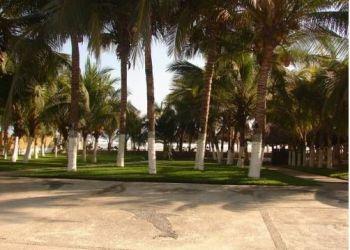 Carretera Barra Vieja km 32 San Andres, 64400 Oloron-Sainte-Marie, Hotel Real Del Mar