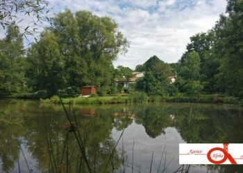 Casa Azay-sur-Thouet, Casa in vendita
