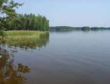 Polvijärventie 116, 83500 Outokumpu, Tuomarniemi Cottages - ID2