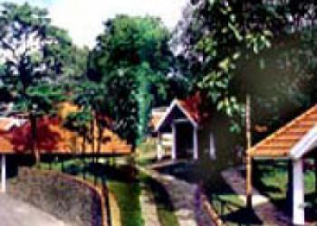 Hotel Kumily, Thekkady Road, Idukki District, 685 536, Thekkady, INDIA, Tree Top
