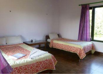 Albergo Sauraha, Bachhauli-6,Hattisar, Hotel Parkside (in Sauraha)**