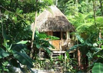Apartamento Marigot, No 1 Bamboo Road, Roots Jungle Retreat