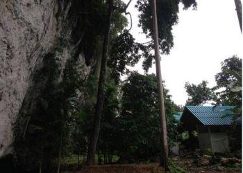 299 Moo6, 74000 Ban Sok, Khao Sok Silver Cliff Resort