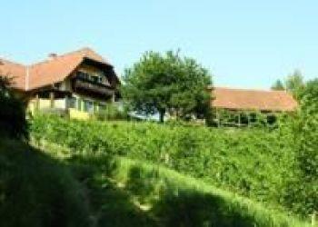 Privatunterkunft/Zimmer frei Kitzeck im Sausal, Steinriegel 26, Weingut Rupp - Martin und Rosemarie Pronegg