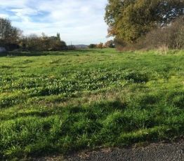 Residential building land Salies, Residential building land for sale