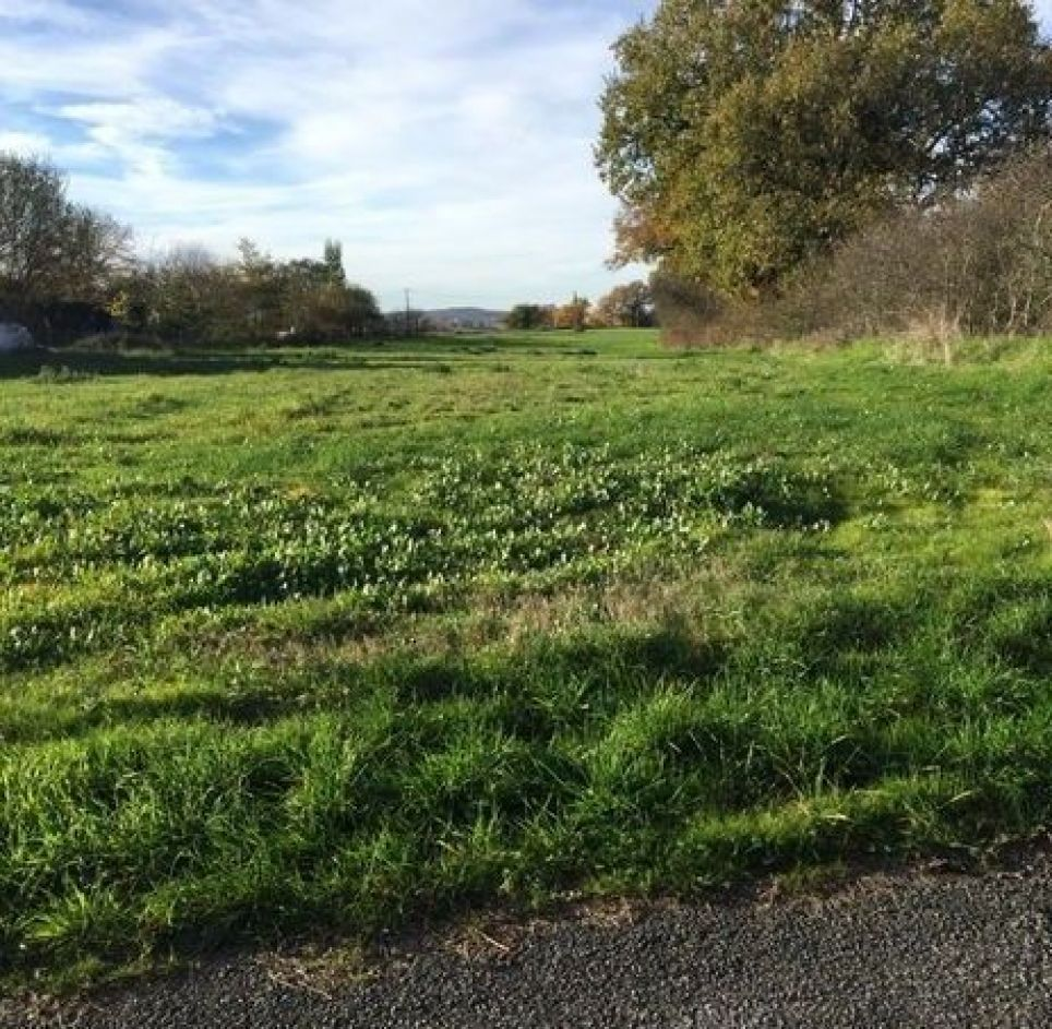 Residential building land for sale, 81990 Salies