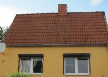Wohnung Sandersdorf-Brehna, Pestalozzistraße 15, Haus für 4+1 Personen ruhig gelegen am See
