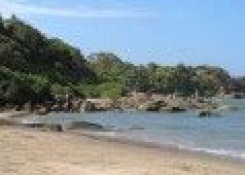 Cola Beach, Benaulim, Hotel - Goa