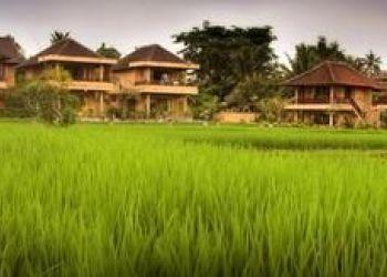 Hotel Ubud, Monkey forest st., Hotel Sri Bungalows