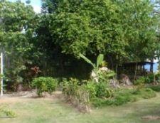 Falepipi Bush Rd, Tuapa, Clifftop Fale - ID3