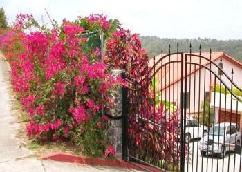 Hotel Micoud, 8 Fond Bay Drive,, Hotel Fond Bay Suites & Villa***