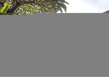 Hôtel Sanur, Jl. By Pass Ngurah Rai No. 35, Hotel Sri Phala Resort & Villa****