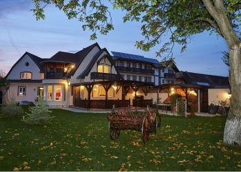 5 Grivitei, 507055 Cristian, Brasov, Ambient Mansion