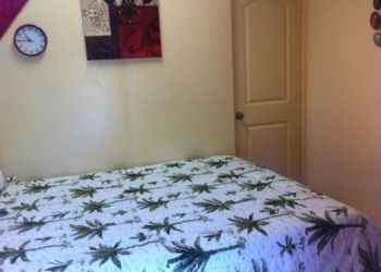 1398 Lower Main Street, 96793 Wailuku, Moped City Maui Bed & Wheel