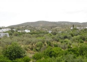 Kalathos, 85102 Kalathos, Kalathos Sun Hotel