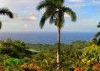 Hotel Breastworks, San San Port Antonio P.O. Box 7312 Portland Jamaica, Geejam 4*
