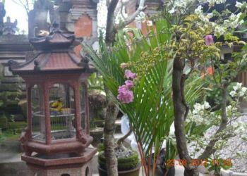 Wohnung Ungasan, Jalan Sugriwa no 58, Bale Bali House