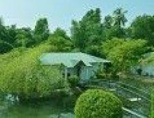 Konni, Pathanāmthitta, Contour Jungle Resorts 3*  - ID2