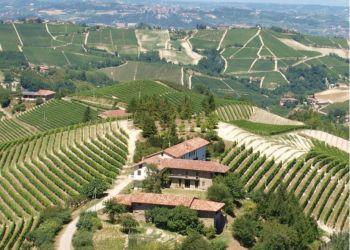 Apartment Trezzo Tinella, Via Naranzana  22, The Grape Pergola House: at top of the hill in area vines Barbaresco & Barolo!